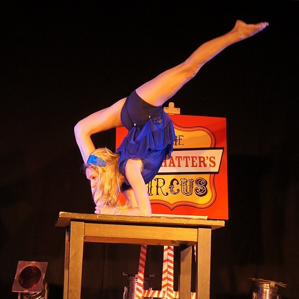 Mad Hatter's Circus Show