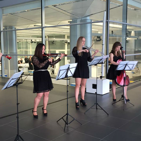 String Quartet (Strings Divas)