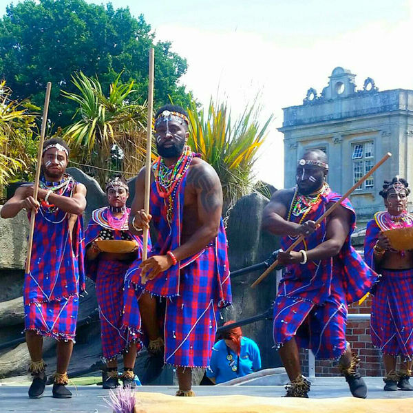African Drumming & Dance Group (Souls of Africa)