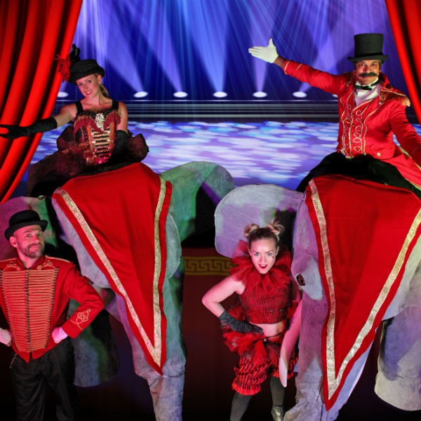 Circus Shows & Performers