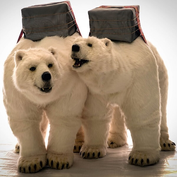 Animatronic Polar Bears