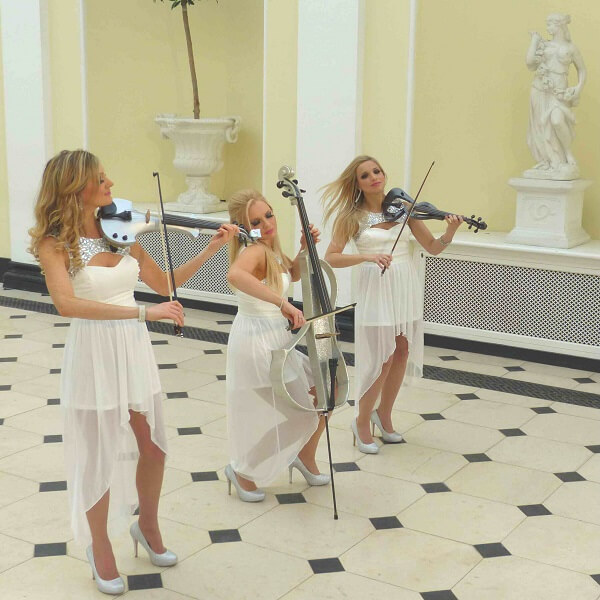 String Electric Trio (Glamour Girls)